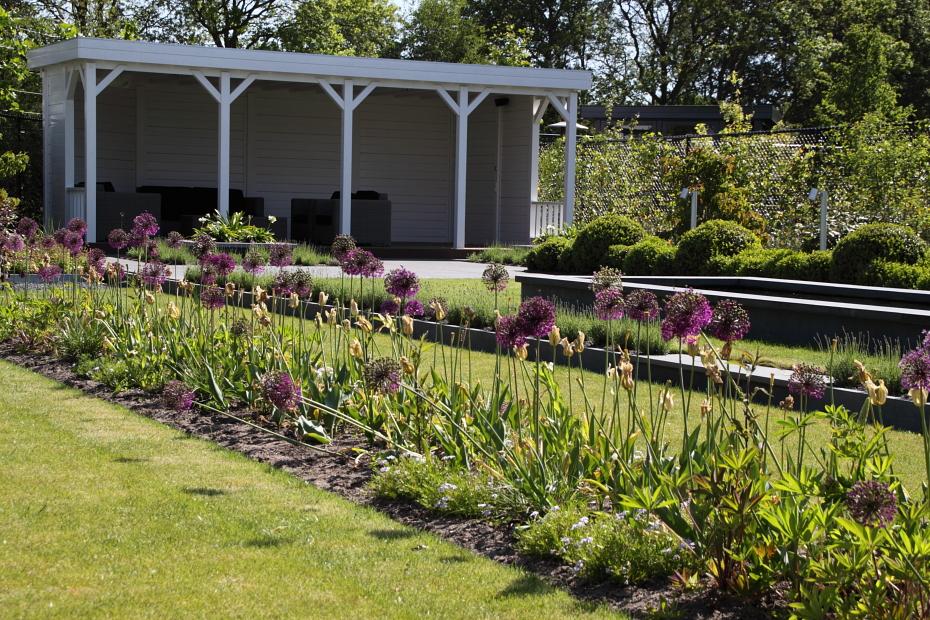 In de periode eind mei-half juni is er van het siergras nog niet veel te zien. In deze strook bloeien dan de sieruien (Allium 'Purple Sensation').